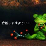 キャリアコンサルタント試験合格に役立ちそうなウェブサイトまとめのイメージ画像・カエルが合格を祈っているところ