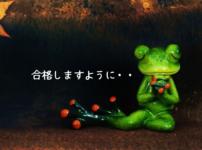 試験合格を祈るカエルの画像
